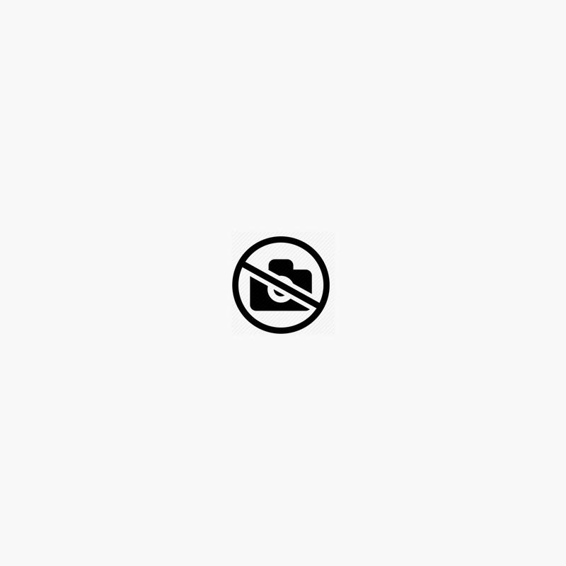 Linke und Rechte Seitenverkleidung für 00-02 Ninja ZX-6R