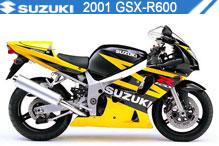 2001 Suzuki GSXR600 zubehör