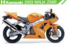 2003 Kawasaki Ninja ZX-6R zubehör