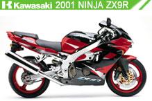 2001 kawasaki Ninja ZX-9R zubehör