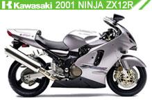 2001 kawasaki Ninja ZX-12R zubehör