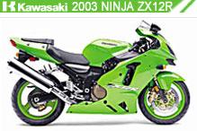 2003 kawasaki Ninja ZX-12R zubehör