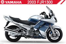 2003 Yamaha FJR1300 zubehör