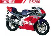 RS250 Verkleidungen
