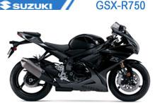 GSXR750 Verkleidungen