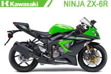 Ninja ZX6R Verkleidungen
