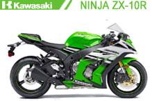 Ninja ZX10R Verkleidungen