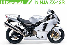 Ninja ZX12R Verkleidungen
