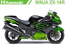 Ninja ZX14R (ZZR_1400) Verkleidungen